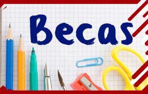 Becas formación, Curso Académico 2018/2019.
