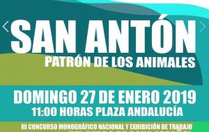 San Antón 2019
